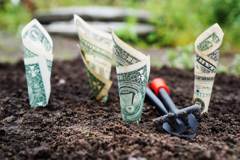 10 Unique Ways To Make Money